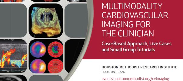 MMI Partner, Methodist DeBakey Heart & Vascular Center